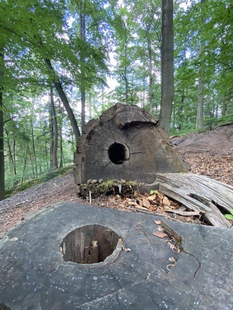 Trunnelogie…          Teil 1: Der Tunnel