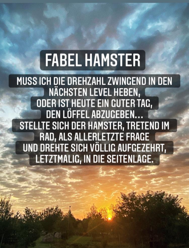 Fabel Hamster