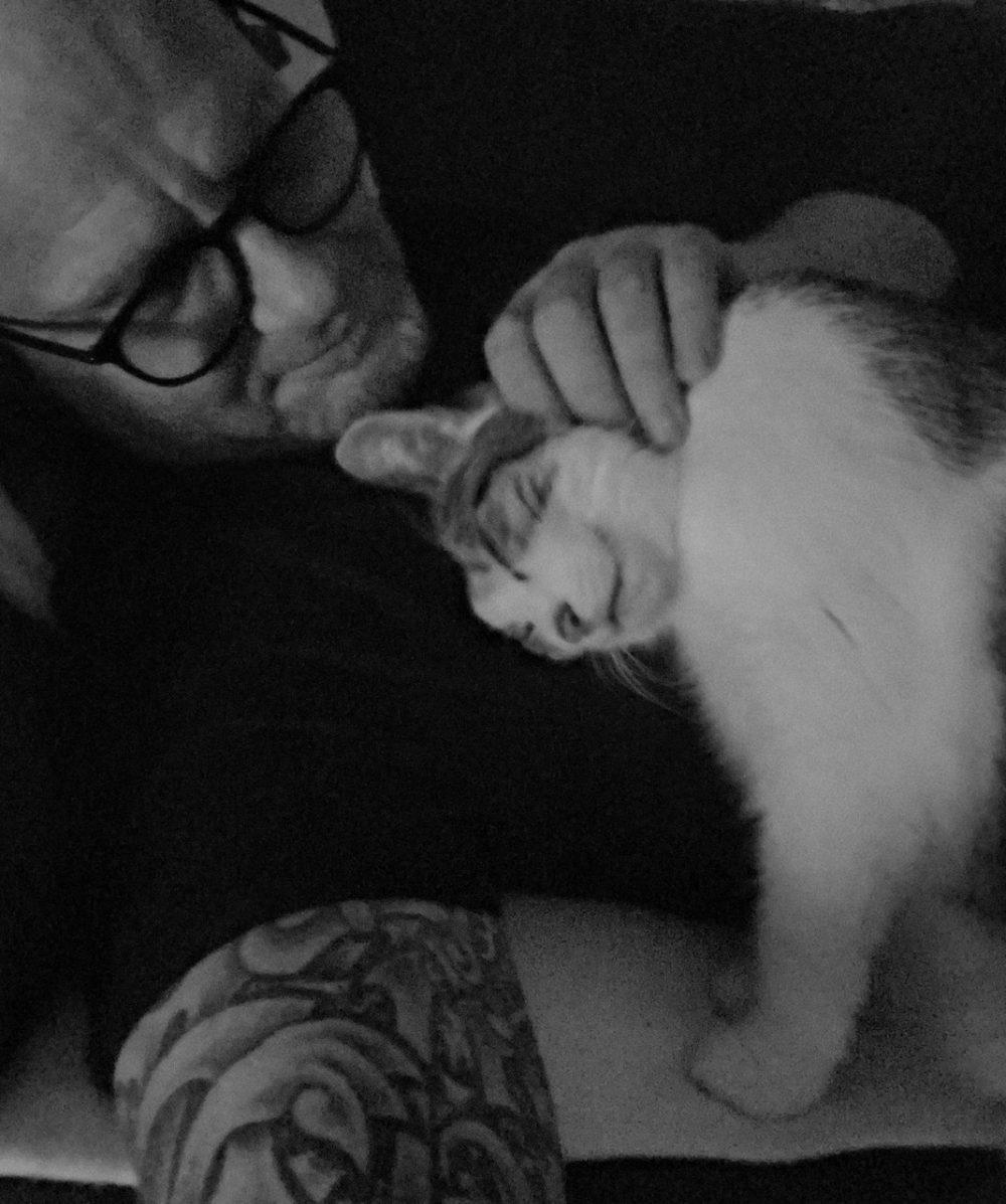Alles für die Katz….