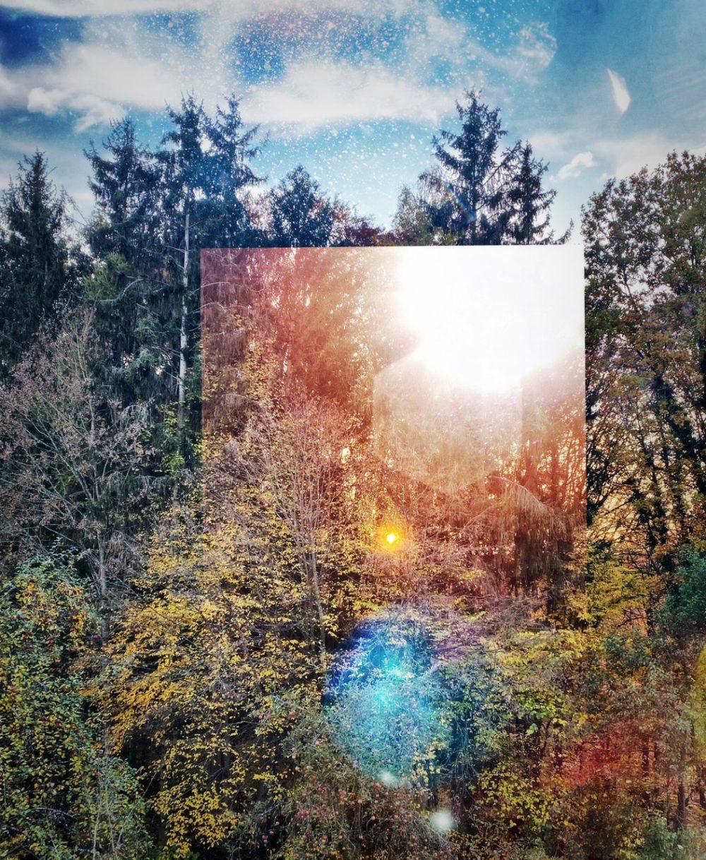 Lyrik-Liebes-November