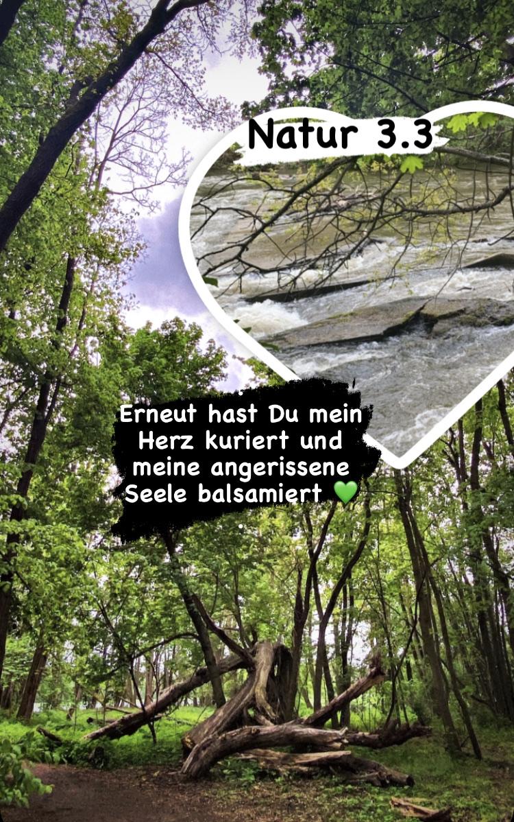 Natur 3.3