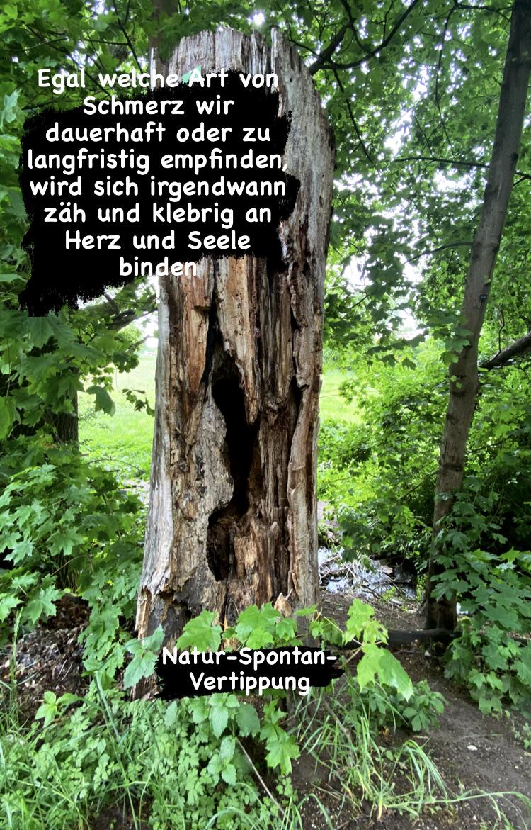 Natur Spontan Vertippung