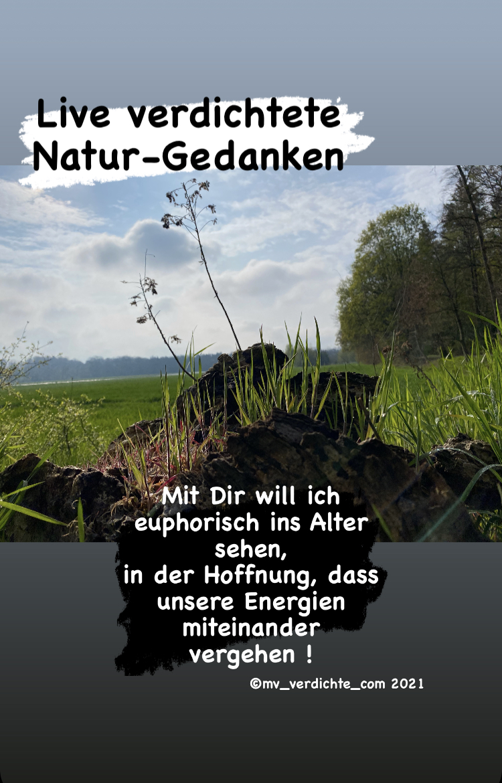Verdichtete Naturgedanken