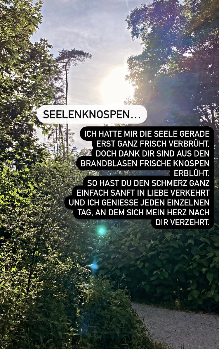 "Freitagstrigger ""Blühen"" at Instagram"