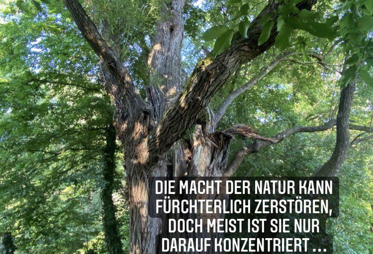 Macht der Natur