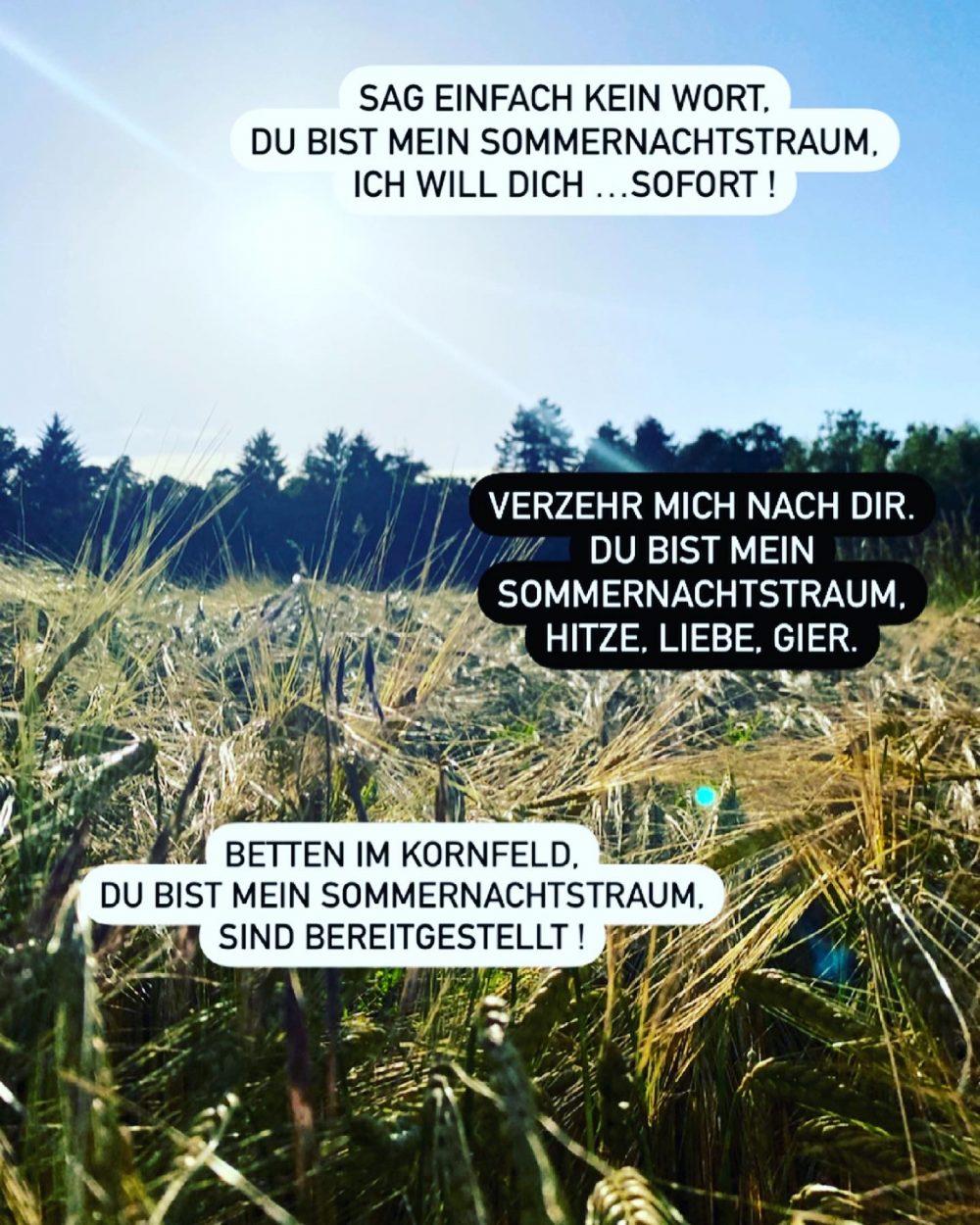 """Sommernachtstraum """"freitagstrigger"""" at Instagram"""