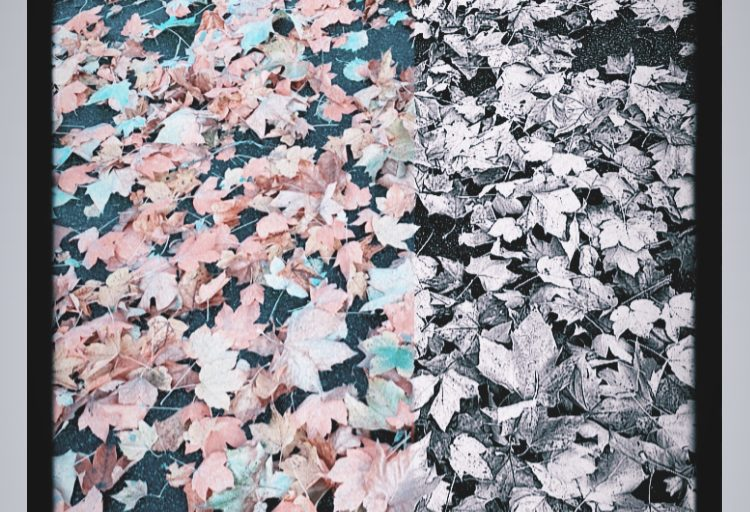 Herbstgedanken