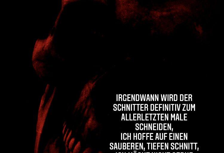 Schnitt(er)